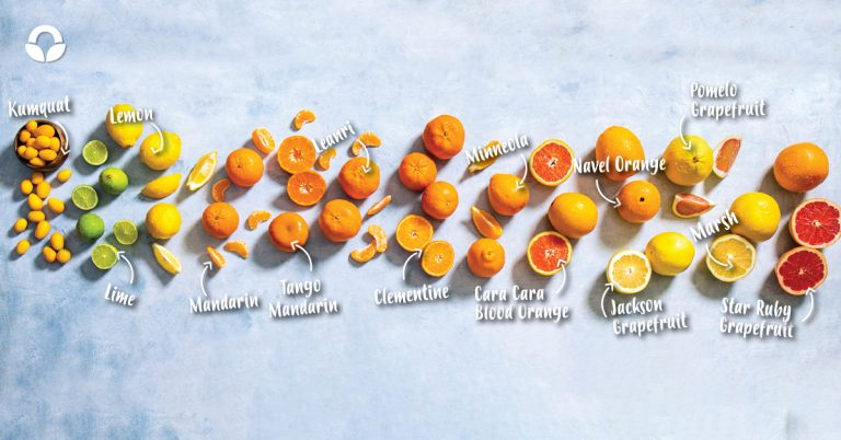 Your Guide to Citrus