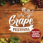 South African Grape Varieties at Food Lover's Market