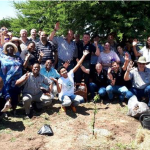 PLANTING TREES IN TEMBISA