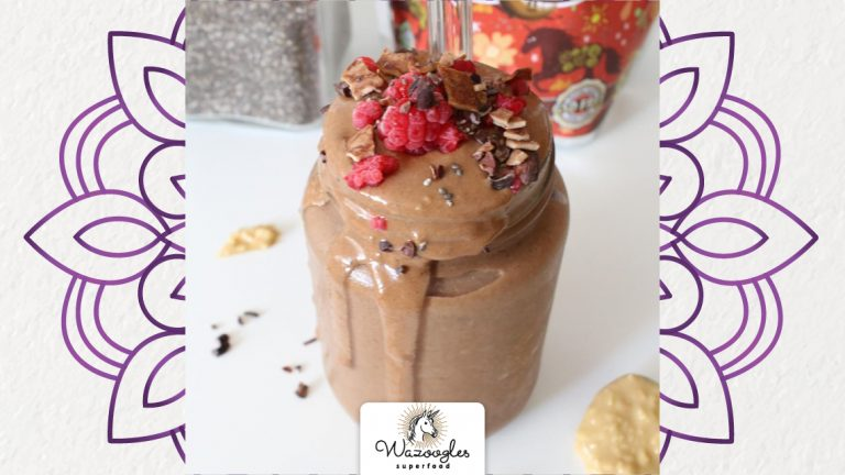 Wazoogles Quick n Easy Chocolate Smoothie
